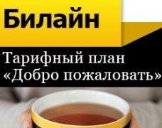 «Добро пожаловать» — тариф от Билайн для звонков по России и СНГ