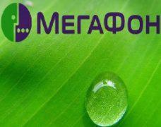 Специальные тарифы и услуги для планшета от Мегафон