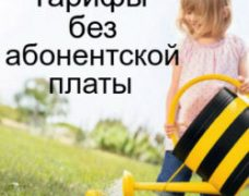 Общение без абонентской платы: тарифы для пенсионеров от Билайн