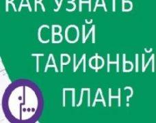 Контроль телефонной связи: как проверить свой тариф и баланс на Мегафон